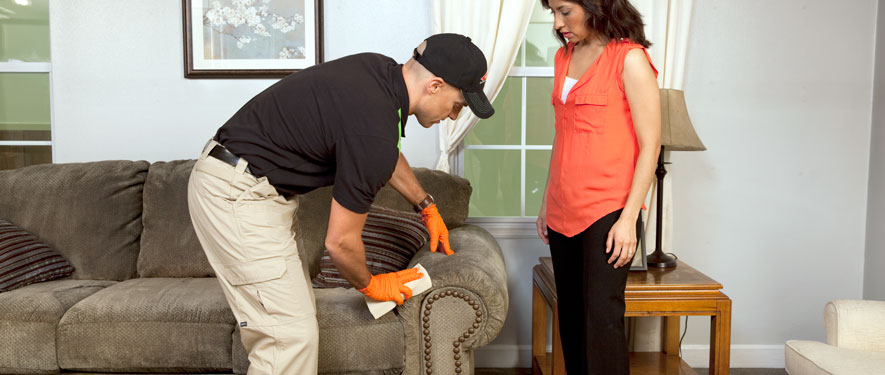 Stoughton, MA carpet upholstery cleaning